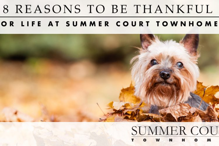 8 Reasons to Be Thankful for Life at Summer Court Townhomes