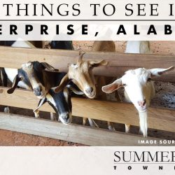 things to see in Enterprise, Alabama