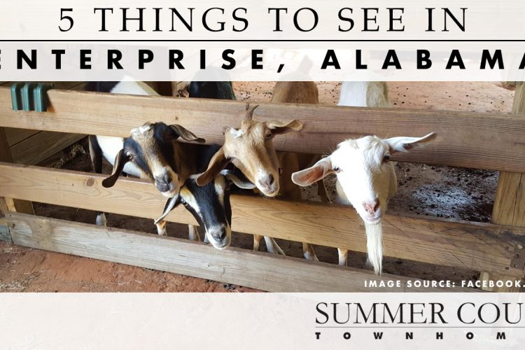 5 Things to See in Enterprise, Alabama