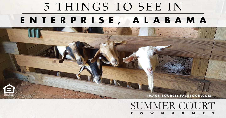 things to see in Enterprise, Alabama