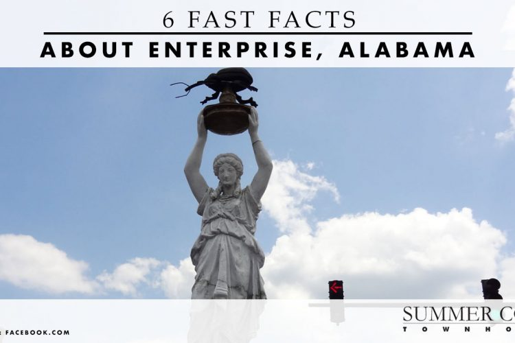 6 Fast Facts About Enterprise, Alabama