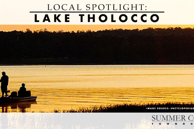 Local Spotlight: Lake Tholocco