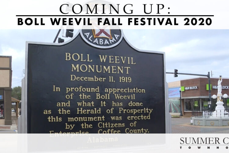 Coming Up: Boll Weevil Fall Festival 2020