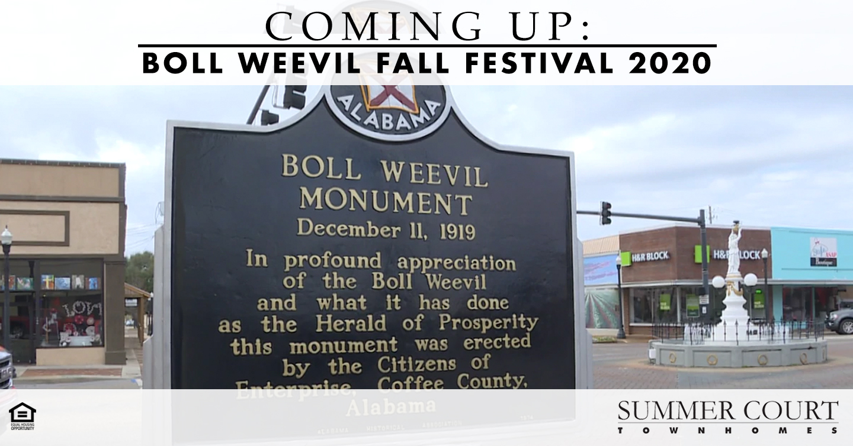 Boll Weevil Fall Festival 2020